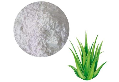 Aloe Lyophilised Powder