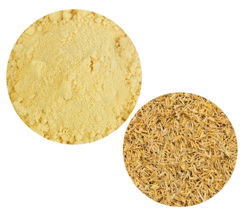Rice bran Ceramide