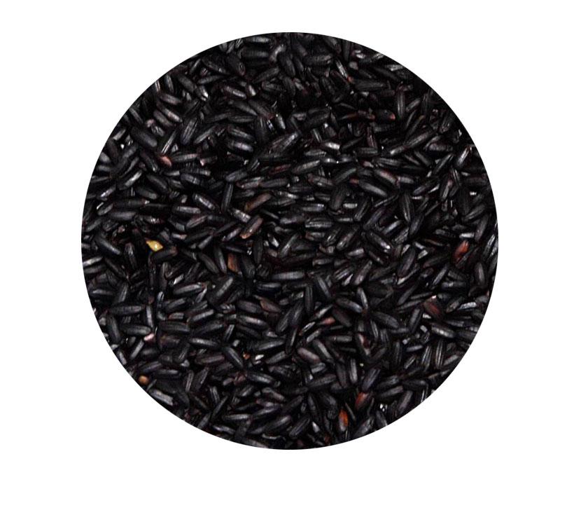 Black Rice Extract
