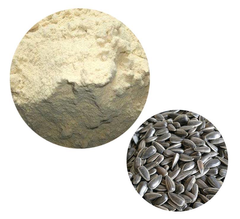 Sunflower Seeds Protein
