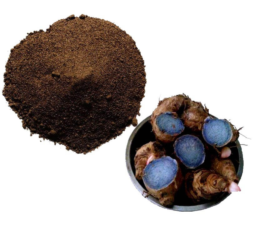 Black Ginger Extract
