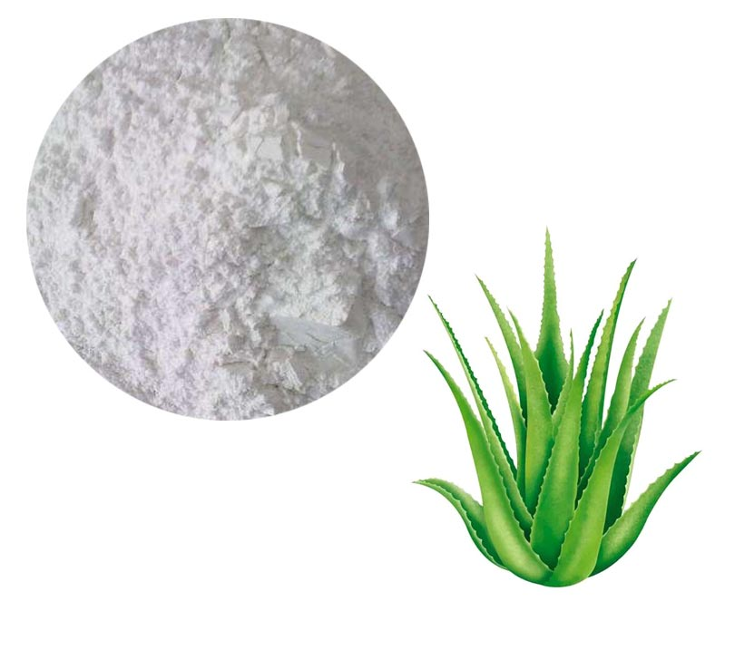 Aloe Lyophilized Powder